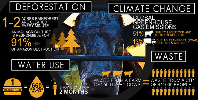 Cowspiracy-animal-factory-FACTS